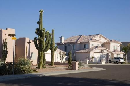 Photo pour Phoenix Arizona Cul-de-sac avec Saguaro Cacti devant Adobe House - image libre de droit