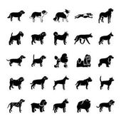 Dogs glyph vector icons