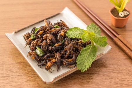 Fried insects - Cricket insect crispy with pandan after fried