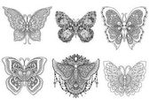 A set of beautiful unique butterflies for design element and adult or kids coloring book page Vector illustration
