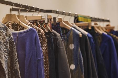 Photo for Women clothing - fall winter collection - Royalty Free Image