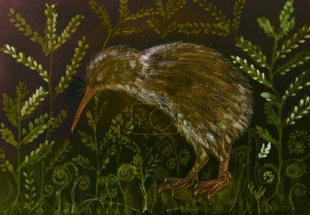 Photo pour Kiwi oiseau dans la nuit avec fond de varan et feuilles. La technique de tamponnage près des bords donne un effet de mise au point doux en raison de la rugosité de surface modifiée du papier . - image libre de droit