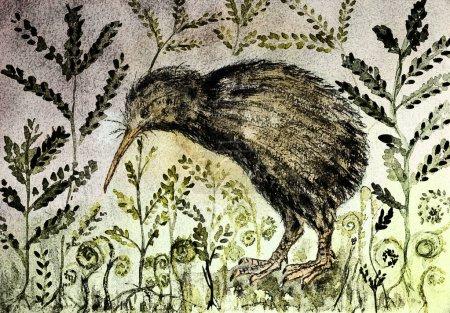 Photo pour Peinture rustique d'un oiseau kiwi dans la nuit avec fond de varen et feuilles. La technique de tamponnage près des bords donne un effet de mise au point doux en raison de la rugosité de surface modifiée du papier . - image libre de droit