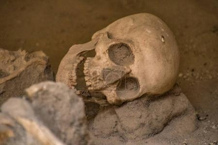 Skulls and bones found entombed in lava