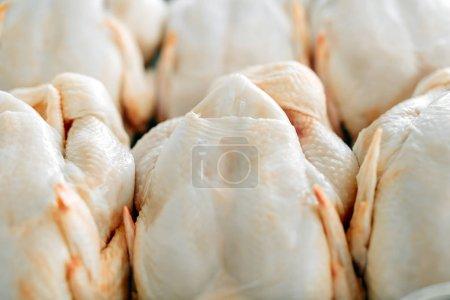 Raw  butchered chicken
