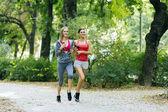 Beautiful sporty women jogging