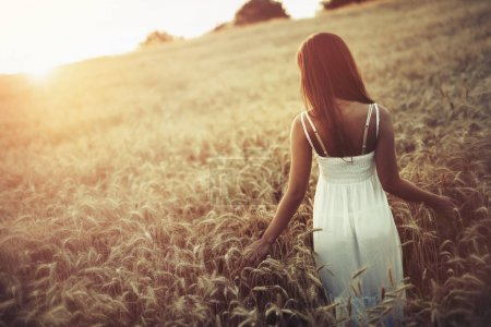 Photo for Beautiful woman in barley fields during sunset - Royalty Free Image