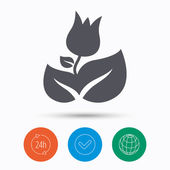Rose flower icon Florist plant with leaf symbol Check tick 24 hours service and internet globe Linear icons on white background Vector