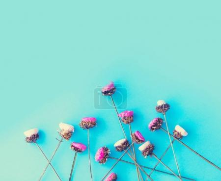 beautiful dried wildflowers