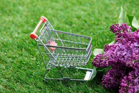 Photo pour Petit panier avec des fleurs lilas sur fond d'herbe verte avec copyspace - image libre de droit