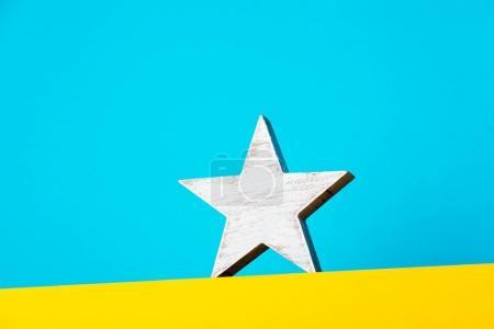 white star decoration