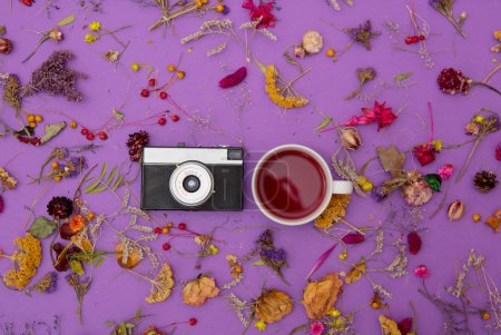 Cup of tea with vintage camera and herbs