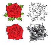 Flower rose Isolated on white background Vector illustration