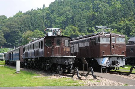 Old locomotives against green trees