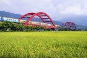 guest city bridge on field