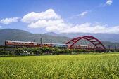 guest city bridge