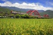 kecheng iron bridge with train near green field in taiwan