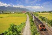red kecheng iron bridge with train near green field in taiwan