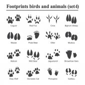 Wildlife animals and birds footprint animal paw prints vector set Footprints of variety of animals illustration of black silhouette footprints
