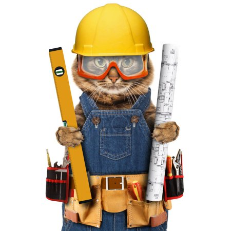 Builder cats with ruler and project in yelow helme...