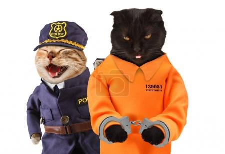 Black cat in a handcuffs with cat policeman near it