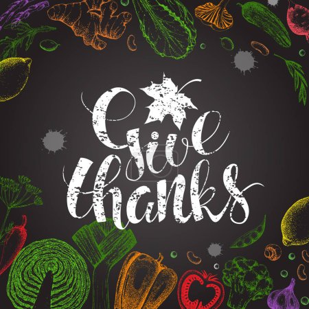 Illustration for Thanksgiving Day vector card. Handwritten calligraphy chalk inscription Give Thanks with maple leaf. Modern calligraphy. Hand drawn vegetables in style engraving. Food vector background. Harvest. - Royalty Free Image