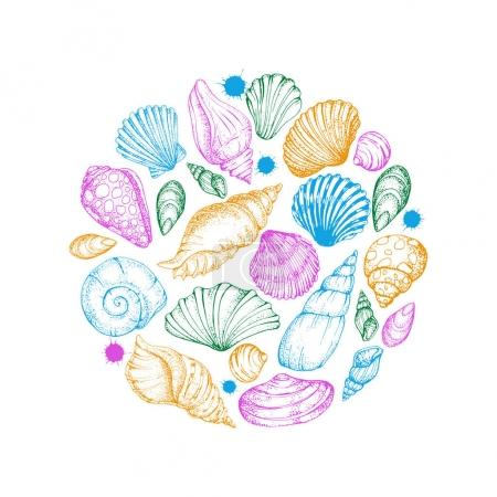 Colorful Card with seashells