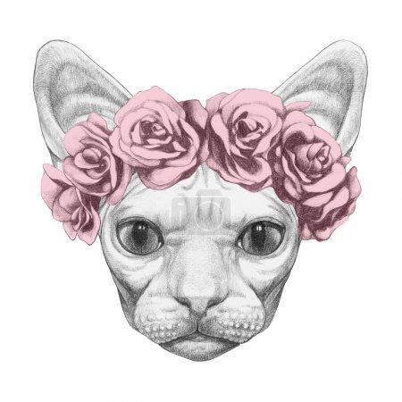 Photo pour Joli portrait croquis de chat Sphynx en couronne de roses, isolé sur blanc - image libre de droit