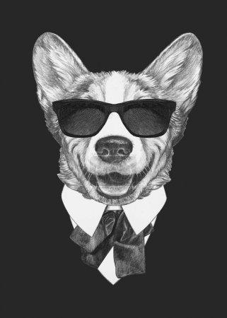 Photo pour Joli portrait croquis de chien gallois Corgi en chemise avec noeud papillon et lunettes de soleil sur noir - image libre de droit