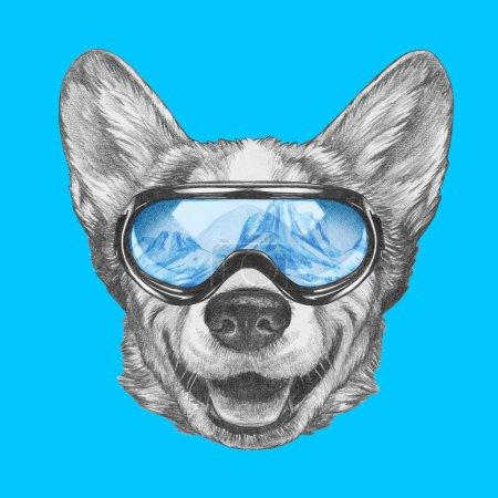 Photo pour Joli portrait croquis de chien gallois Corgi en lunettes de snowboard avec reflet des montagnes sur bleu - image libre de droit