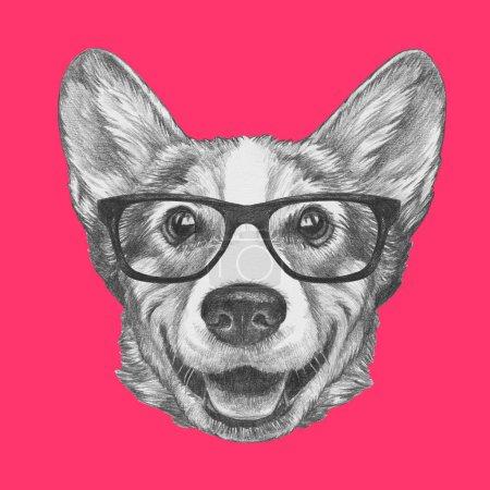Photo pour Joli croquis portrait de chien Welsh Corgi en lunettes de hipster rose - image libre de droit