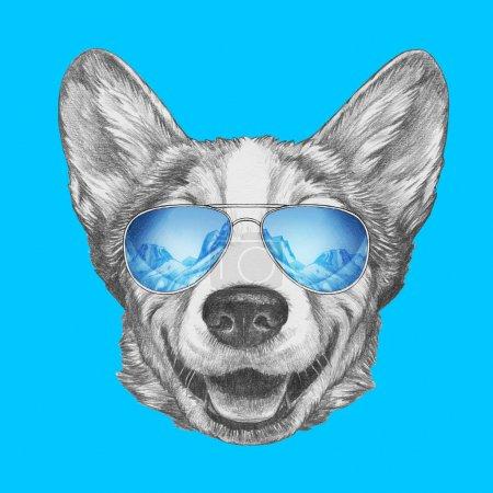 Photo pour Joli portrait croquis de chien gallois Corgi en lunettes de soleil aviateur avec reflet des montagnes sur bleu - image libre de droit