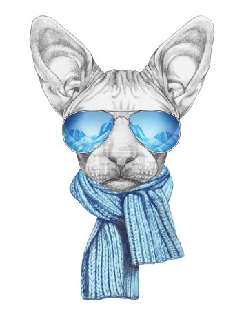 Nice sketch portrait of Sphynx cat in knitted skarf and aviator sunglasses with reflection of mountains