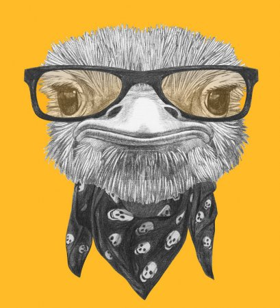 Funny sketch portrait of ostrich in hipster glasses and bandana with skulls on yellow