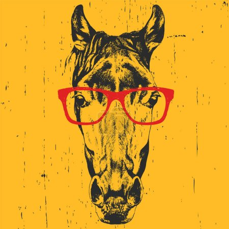 Illustration for Hand drawn portrait of horse with glasses. Vector isolated elements. - Royalty Free Image