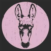 Hand drawn portrait of donkey