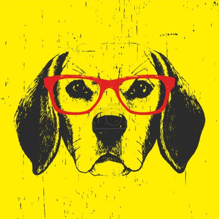 Portrait of Beagle Dog with glasses.