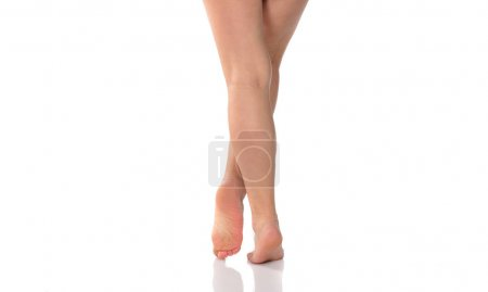 Slim female legs. Beauty concept. Isolated on white background