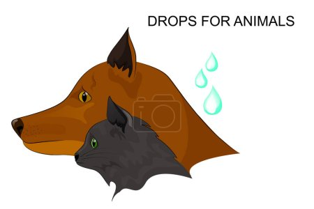 drops from fleas, dogs and cats