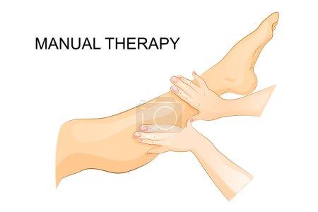 manual therapy. women's leg. foot massage