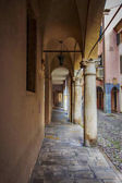 The architecture of the beautiful Italian city of Padua, houses and arches