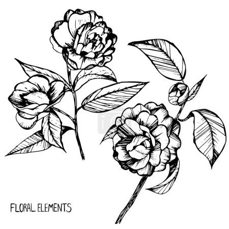 camellia,ink,pen capillary,handmade, leaves, flowers,buds, flower collection,Set of floral elements for your compositions,coloring books for children and adults