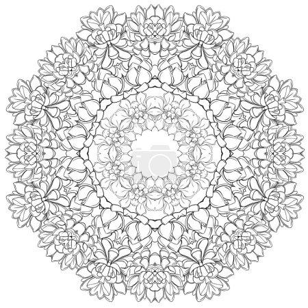 Mandala,Succulents. circular pattern