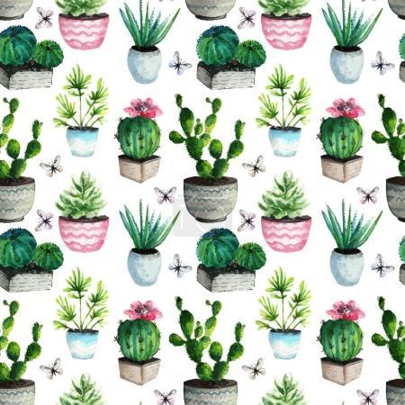 illustration. Beautiful cactuses