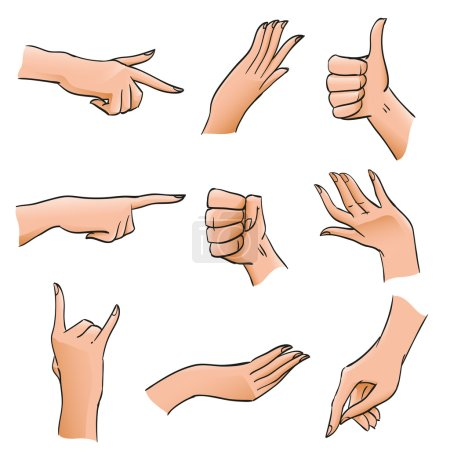 Set of Hands and Fingers in Different Positions and Gestures. Body Part angles deployed palm, fist, affirmative gesture for illustrations, design diagrams and instructions, isolated vector objects