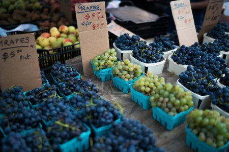 Photo for Fresh produce on sale at the local farmers market. Pint baskets of organic grapes on the counter. - Royalty Free Image