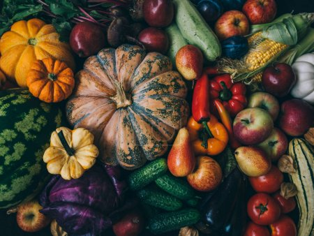 Photo for A collection of fresh and delicious vegetables. - Royalty Free Image