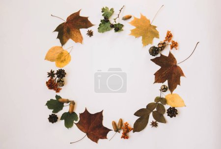 Photo for Wreath made of pumpkin, autumn berries, dried leaves, acorn, pine cones, anise star on pastel background. Autumn concept. Flat lay, top view, copy space. Toned image. Vintage style. Autumn background. - Royalty Free Image