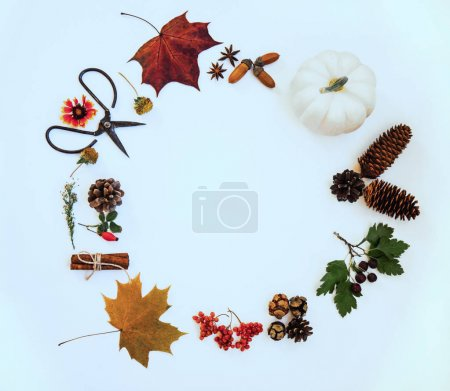 Photo for Wreath made of pumpkin, autumn berries, dried leaves, acorn, pine cones, anise staron pastel background. Autumn concept. Flat lay, top view, copy space. Toned image. Vintage style. Autumn background. - Royalty Free Image
