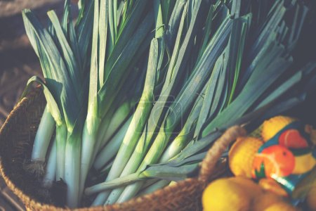 Photo for Organic fresh agricultural product at farmer market. Autumn organic vegetables. Bio, healthy food. Freshly, seasonal harvested vegetables. Agriculture products. - Royalty Free Image
